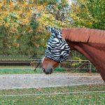 Masque-anti-mouches-Zebra-VLC-Europe