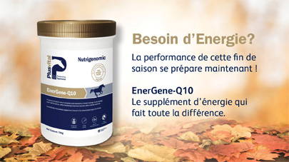 Energene Q10 VLC Europe